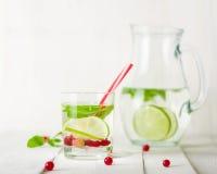 在一个玻璃水罐和玻璃的戒毒所水 莓果和石灰、红色和绿色 新鲜的叶子薄菏 免版税库存照片