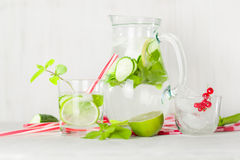 在一个玻璃水罐和玻璃的戒毒所水 莓果和石灰、红色和绿色 新鲜的叶子薄菏 库存图片