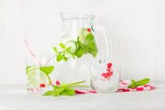 在一个玻璃水罐和玻璃的戒毒所水 莓果和石灰、红色和绿色 新鲜的叶子薄菏 图库摄影