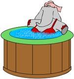 在一个浴盆的大象 库存照片