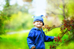 在一个滑稽的帽子的孩子在树附近 免版税库存图片