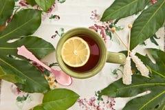 在一个绿色杯子的茶 库存照片