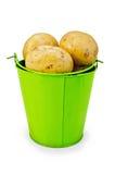 在一个绿色桶的土豆黄色 免版税库存图片