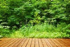 在一个绿色森林温泉的木地板, welness,自然 库存图片