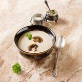 在一个黑色的盘子的奶油色自创蘑菇汤用荷兰芹 Marb 免版税库存照片