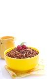 在一个黄色碗的巧克力格兰诺拉麦片 图库摄影
