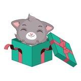 在一个绿色礼物盒的逗人喜爱的灰色猫 库存图片