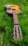 在一个绿色象草的领域的老木声学吉他 免版税库存照片