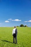在一个绿色领域的商人 免版税库存图片