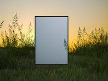 在一个绿色领域的白色框架在日落 免版税库存照片