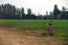在一个绿色领域的Bycicle 免版税库存图片