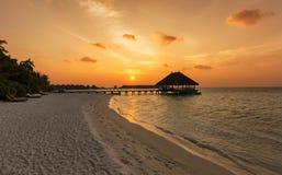 在一个Maldivian海滩的日落 免版税库存图片