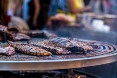 在一串巨型烤肉烤的肉 免版税库存照片