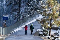 在一串被铺的足迹的冬天步行 免版税库存图片