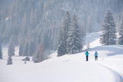 在一串足迹的速度滑雪在多雪的风景 图库摄影