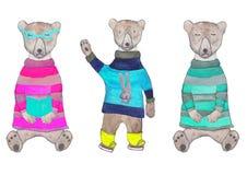 在一件被编织的毛线衣和玻璃,睡觉在一件被编织的镶边毛线衣的行家女用连杉衬裤熊的行家女用连杉衬裤熊 向量例证