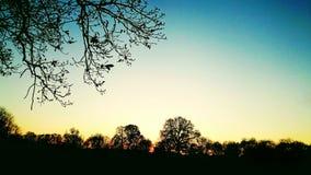 在一公开parc的美好的日落 免版税库存照片