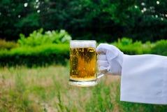 在一副白色手套的侍者` s手拿着一个啤酒杯以自然为背景 免版税库存图片