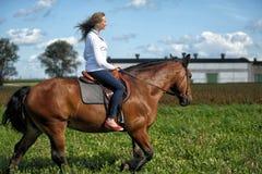 在一匹棕色马的少妇骑马 库存图片