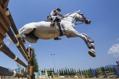 在一匹马的未知的车手在竞争时匹配乘坐在周围 图库摄影