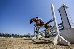 在一匹马的未知的车手在竞争时匹配乘坐在周围 库存照片