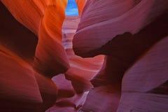在一只不可思议的峡谷羚羊的优美的曲拱 库存图片