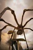 在一只巨大的蜘蛛的腿之间叫Maman 库存照片