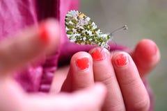 在一只幼儿手上的一只蝴蝶 库存照片