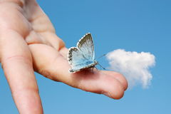 在一只手上的蓝色蝴蝶在蓝天背景中 免版税库存图片