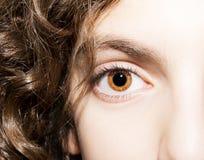 在一只棕色眼睛的通透的神色 免版税图库摄影