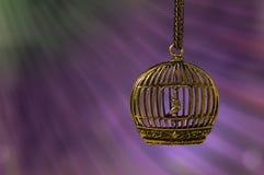 在一只笼子的下垂鸟在美好的背景 在链子的时髦的垂饰 免版税库存图片