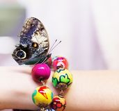 在一只girl's手上的蝴蝶有五颜六色的镯子的 免版税库存图片