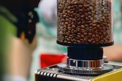 在一台研磨机的特写镜头新鲜的烤咖啡豆为准备对碾碎并且金属化磨石 鲜美芳香的概念 免版税库存图片