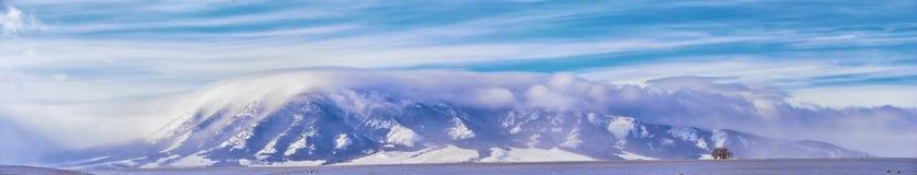 在一场飞雪期间的怀俄明乡下全景与与积雪的山与阴云密布灰色多云天空 库存图片