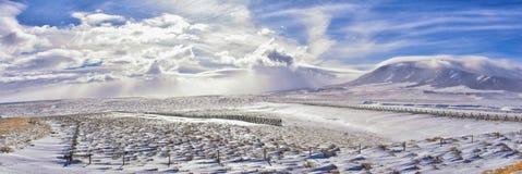 在一场飞雪期间的怀俄明乡下全景与与积雪的山与阴云密布灰色多云天空 免版税库存照片