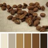 在一块亚麻布的咖啡豆,与色板显示 免版税库存图片