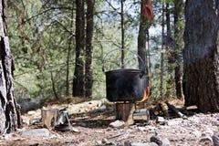 ??1?? 在一块小沼地在一个具球果森林准备是在一个挑运的木灼烧的火炉的罐 附近杯子 免版税库存照片