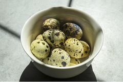 在一块小白色板材的鹌鹑蛋在具体背景,站立在桌上 库存照片