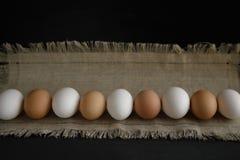 在一块帆布的鸡蛋在黑暗的背景 库存图片