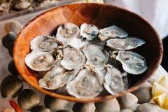 在一块木板材的十几只未加工的牡蛎 免版税图库摄影