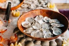 在一块木板材的十几只未加工的牡蛎 库存照片