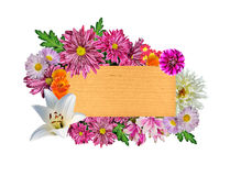 在一块木牌附近的美好的明亮的花卉框架 库存图片