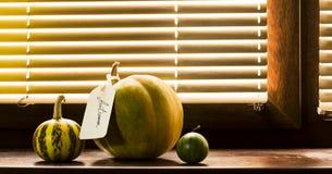 在一块木窗口基石的南瓜 库存照片