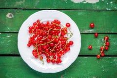 在一块板材的成熟新鲜的有机红浆果在绿色背景 库存图片