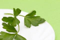在一块板材的荷兰芹在绿色背景 免版税库存图片