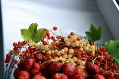 在一块板材的莓果无核小葡萄干在窗口 库存图片
