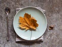 在一块板材的黄色秋天叶子在一张大理石桌上 免版税图库摄影
