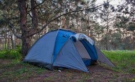 在一块森林沼地的一个蓝色帐篷,在一个夏天晚上 库存图片