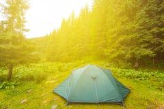 在一块森林沼地的旅游帐篷在阳光下 免版税库存照片