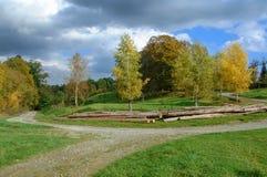 在一块沼地的农村田园诗在秋天 图库摄影